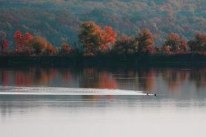 falla vid sjön värt foto
