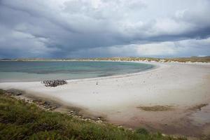 Yorke Bay foto