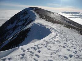 vintern häger gädda från stor rigg foto