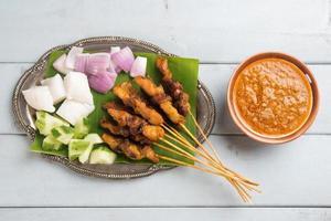 malay kyckling satay foto
