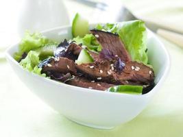 struts (nötkött) sallad
