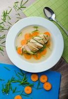kycklingbuljong med färska grönsaker foto