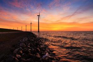 solnedgång vindkraftverk foto
