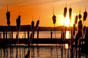 solnedgång över brygga foto