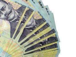 många sedlar på hundra lei foto