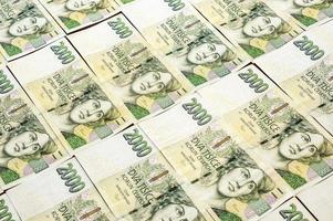 tjeckiska pengar array i mönster foto