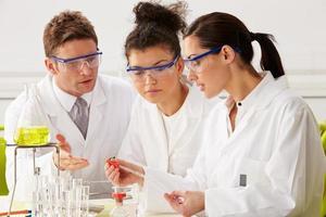grupp forskare som utför experiment i laboratoriet foto