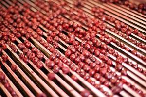surkörsbär i bearbetningsmaskiner foto