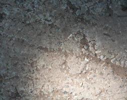betongvignett foto