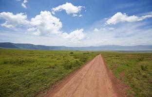 väg i ngorongoro krater. foto