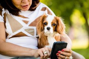 kvinna, hund och mobiltelefon foto