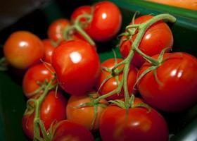 färska tomater i livsmedelsbutik foto