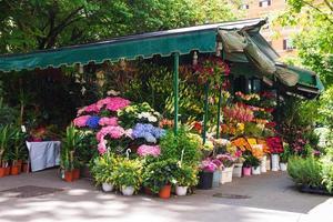 shoppa på försäljning av blommor i den italienska staden foto