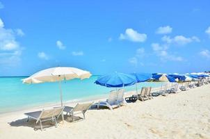 karibisk strand foto