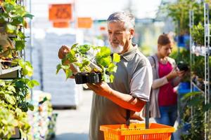 äldre man köper jordgubbväxter i ett trädgårdscenter