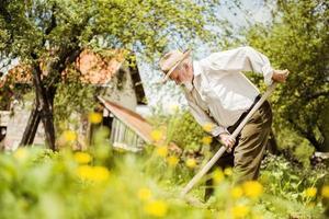 gammal bonde på ängen foto