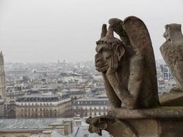 Notre Dame katedral gargoyle foto