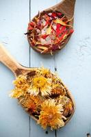 homeopatisk medicin. foto