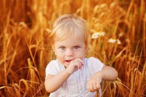 sommar liten baby foto