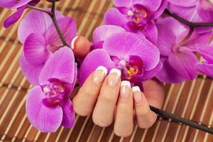 kvinnlig hand med fransk manikyr holdinf orhird blommor foto