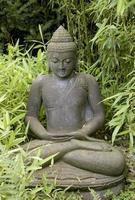 staty av en buddha foto