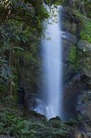 mok (morg) fa vattenfall foto