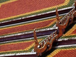 närbild många färg tak foto