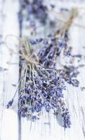 torkad lavendel foto