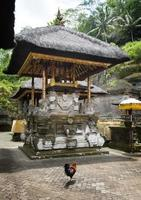 gunung kawi tempel foto