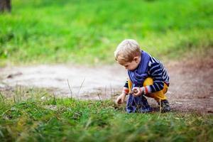 pojke som leker med kottar, samla kottar i skogen foto