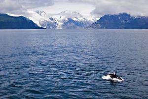havsutsikt foto