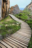 trä gångväg och stenar vid kusten foto