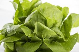 grön vagetable vit bakgrund foto