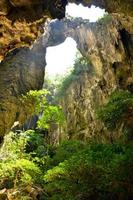 bergskog - utsikt från grottan foto