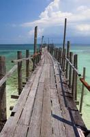 tropisk brygga foto