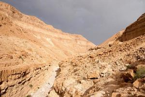 vandring i äventyr i stenöken Mellanöstern foto
