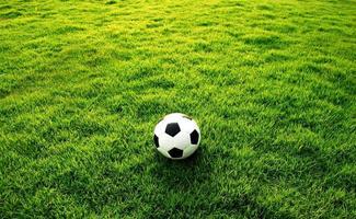 fotboll grönt gräs foto
