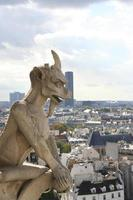 gargoyle, Notre Dame katedral i Paris. foto