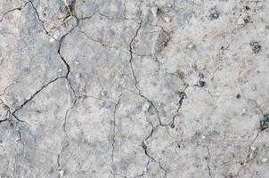 sprucken jord foto