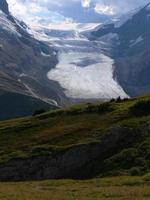 athabasca glaciär foto