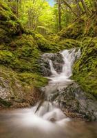 litet vattenfall i parken (långsam slutartid) foto