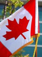 dekorerad kanadensisk flagga