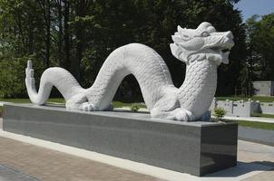 asiatisk drake foto