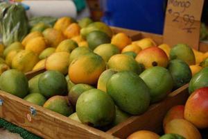 tropisk frukt foto