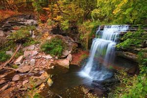 vattenfall i höstlöv foto