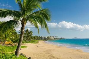 tropisk strand foto