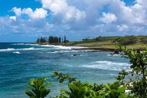kusten i Maui, Hawaii foto