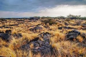 landskap av den stora ön. hawaii. USA foto