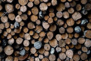 staplade trädstammar foto