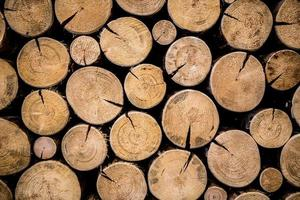 foto av naturligt trä